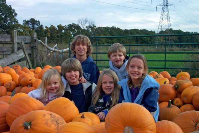 Pumpkin Picking 10:12:2004